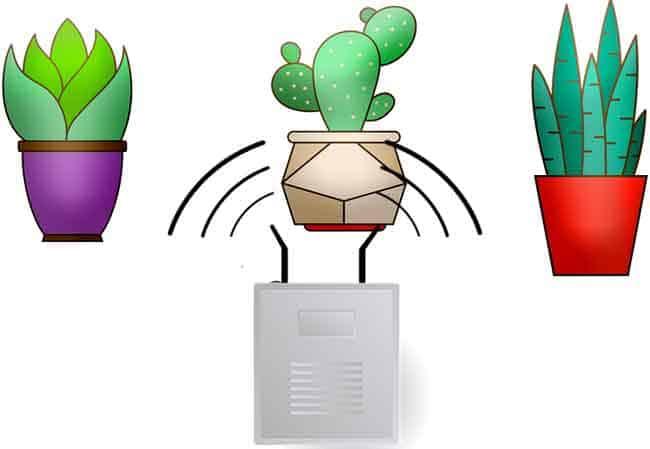 EMF impact on plants growth